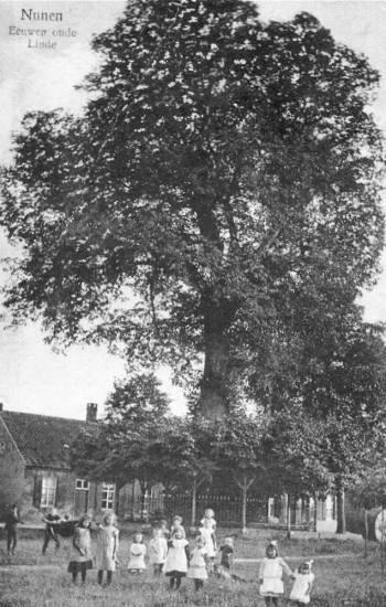 lindeboom nunen