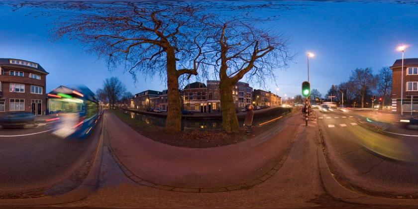 Platanen Venuslaan Utrecht