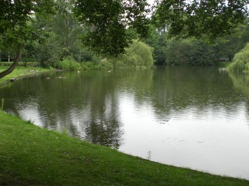 vijver wilhelminapark utrecht